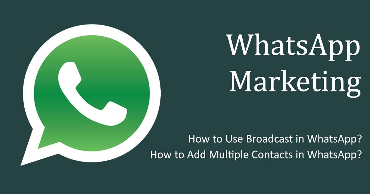 WhatsApp Marketing SEOsurfer
